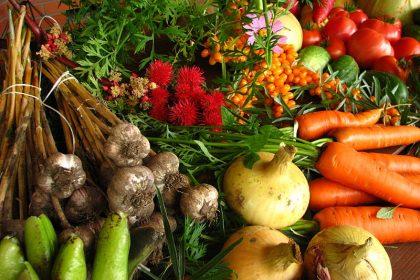 Nouveaux intrants approuvés en agriculture biologique